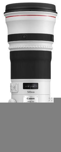 Canon EF 500mm f/4.0 L IS USM MKII