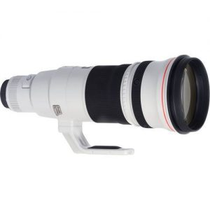 Canon EF 500mm f/4.0 L IS USM MKII Lens