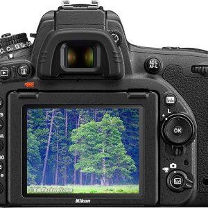 Nikon D750 Body Plus AF 24-120mm F4G AF-S VR Lens