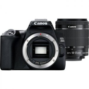 Canon EOS 250D (24 MP) Black 18-55 IS STM