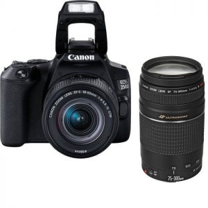 Canon EOS 250D (24 MP) Essential Double Lens Kit