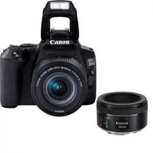 Canon EOS 250D (24 MP) Essential Portrait Kit