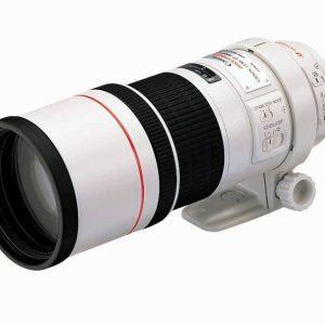 Canon EF 300mm f/4 IS USM Lens